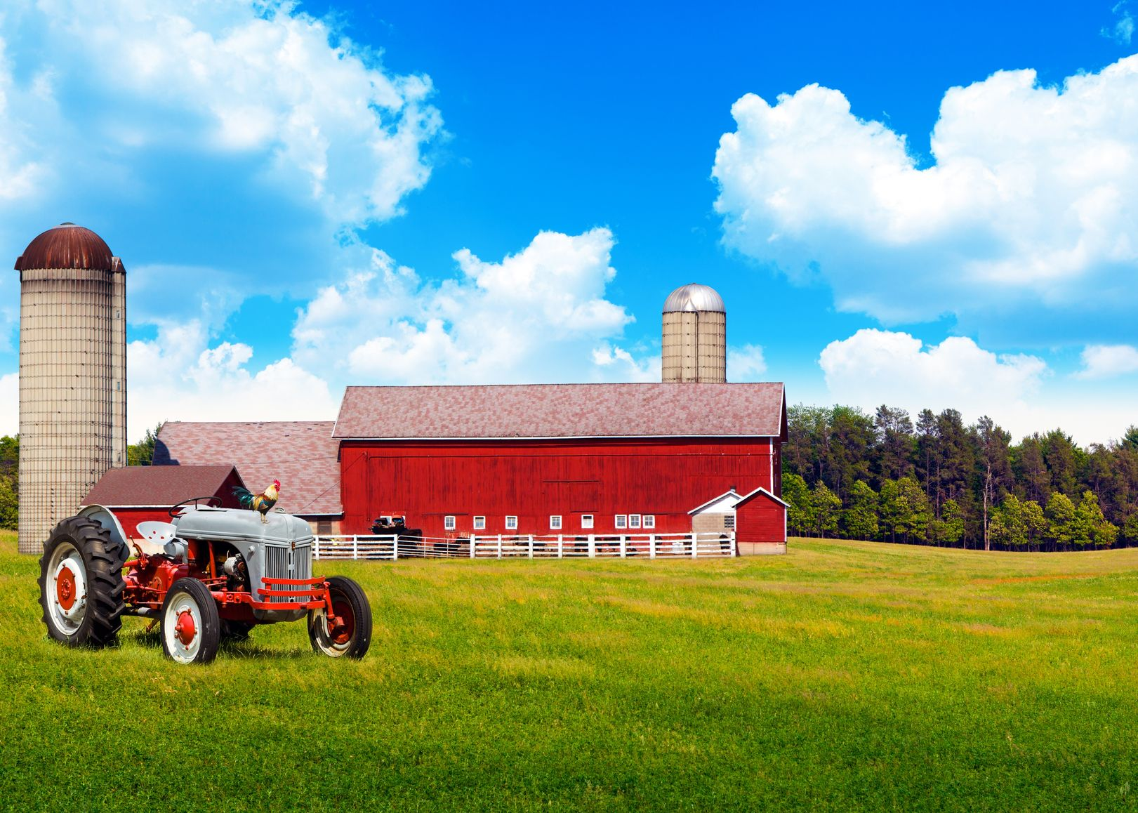 Bartow, FL. Farm & Ranch Insurance